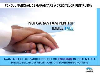FONDUL NA ŢIONAL DE GARANTARE A CREDITELOR PENTRU IMM