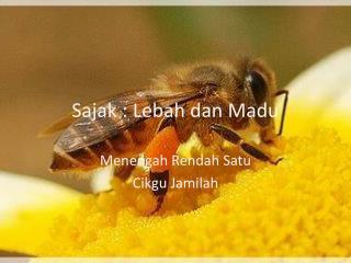 Sajak  :  Lebah dan Madu