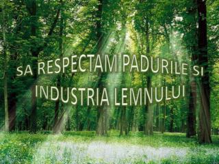SA  RESPECTAM PADURILE  SI  INDUSTRIA LEMNULUI