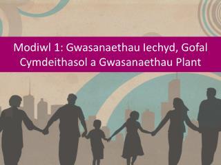 Modiwl  1:  Gwasanaethau Iechyd ,  Gofal Cymdeithasol  a  Gwasanaethau  Plant