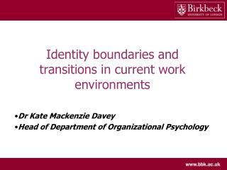 Identity boundaries and transitions in current work environments