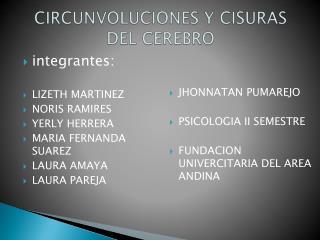 CIRCUNVOLUCIONES Y CISURAS DEL CEREBRO