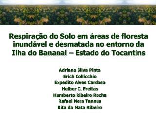 Adriano Silva Pinto Erich Collicchio Expedito Alves Cardoso Helber C. Freitas