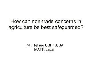 How can non-trade concerns in agriculture be best safeguarded?