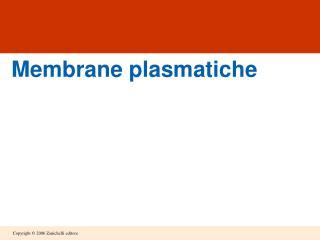 Membrane plasmatiche
