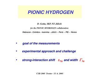 PIONIC HYDROGEN