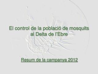 El control de la població de mosquits al Delta de l'Ebre