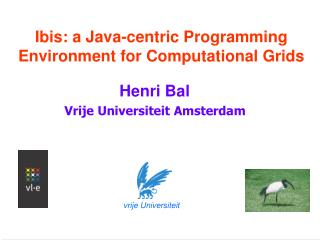Ibis: a Java-centric Programming Environment for Computational Grids