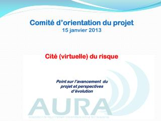 Comité d'orientation du projet  15 janvier 2013