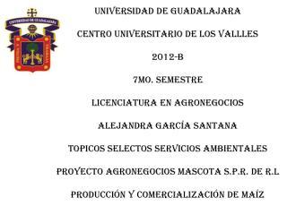 UNIVERSIDAD DE GUADALAJARA CENTRO UNIVERSITARIO DE LOS VALLLES 2012-B 7MO. SEMESTRE