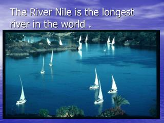 The River Nile is the longest river in the world .