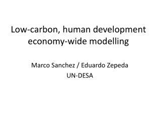 Low-carbon, human development economy-wide  modelling