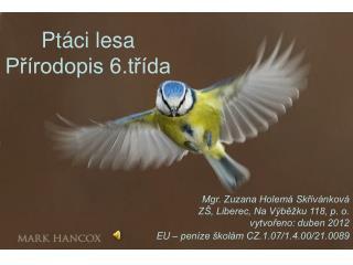 Ptáci lesa Přírodopis 6.třída