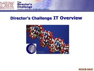 Director's Challenge  IT Overview