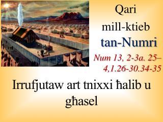 Qari  mill-ktieb  tan- Numri Num  13, 2-3a. 25–4,1.26-30.34-35