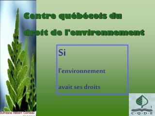 Centre qu�b�cois du  droit de l'environnement