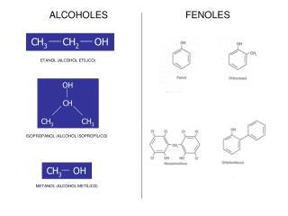 ETANOL (ALCOHOL ETÍLICO)