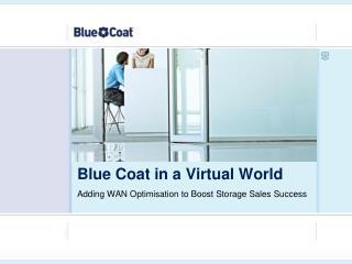 Blue Coat in a Virtual World