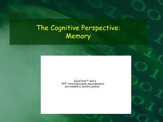 The Cognitive Perspective: Memory