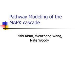 Pathway Modeling of the MAPK cascade
