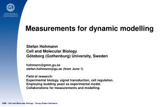 Measurements for dynamic modelling