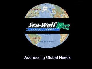Addressing Global Needs