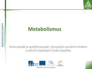 Metabolismus