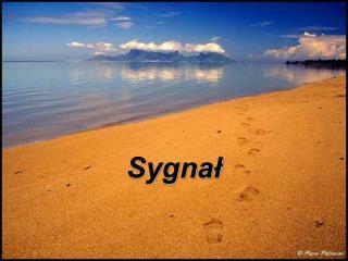 Sygna?