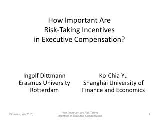 How Important Are  Risk-Taking Incentives  in Executive Compensation?