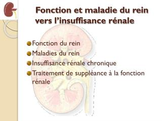 Fonction et maladie du rein vers l'insuffisance rénale