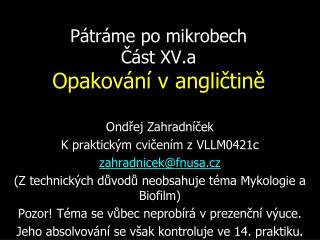 Pátráme po mikrobech Část XV.a Opakování v angličtině