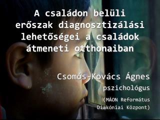 A családon belüli erőszak diagnosztizálási lehetőségei a családok átmeneti otthonaiban