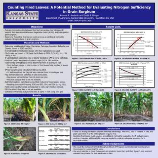 Counting Fired Leaves: A Potential Method for Evaluating Nitrogen Sufficiency  in Grain Sorghum