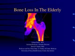 Bone Loss In The Elderly