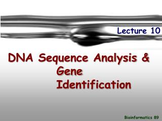 DNA Sequence Analysis &            Gene  Identification