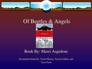 Of Beetles & Angels