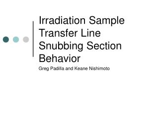 Irradiation Sample Transfer Line Snubbing Section Behavior