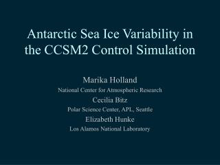 Antarctic Sea Ice Variability in the CCSM2 Control Simulation