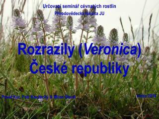 Rozrazily ( Veronica ) České republiky