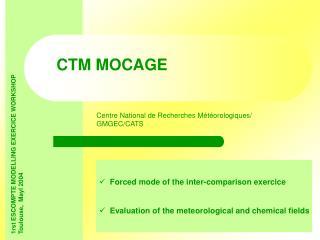 CTM MOCAGE
