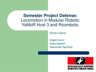Semester Project Defense: Locomotion in  Modular Robots:  YaMoR Host 3 and Roombots.