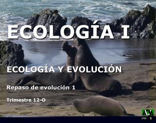ECOLOGÍA I ECOLOGÍA Y EVOLUCIÓN Repaso de evolución 1 Trimestre 12-O