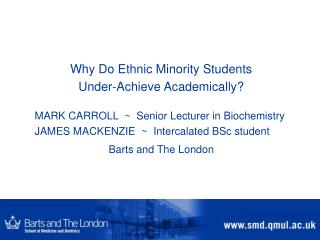Why Do Ethnic Minority Students  Under-Achieve Academically?