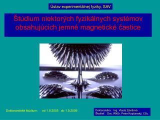 Štúdium niektorých fyzikálnych systémov obsahujúcich jemné magnetické častice