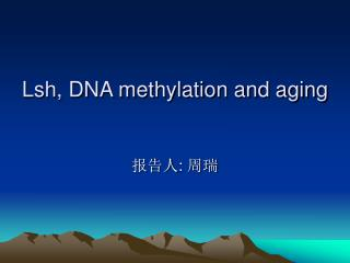 Lsh, DNA methylation and aging