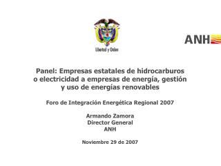 Panel: Empresas estatales de hidrocarburos o electricidad a empresas de energía, gestión