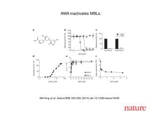 AM King  et al. Nature  510 , 503-506 (2014)  doi:10.1038/nature13445