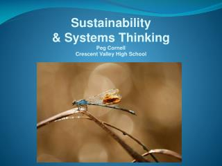 Sustainability  & Systems Thinking Peg Cornell Crescent Valley High School