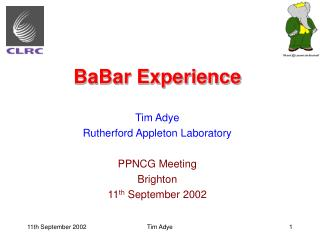 BaBar Experience