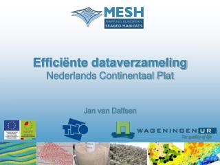 Effici ënte dataverzameling Nederlands Continentaal Plat